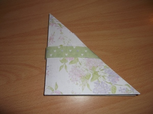 Cropped Challenge 5b by Anita Raffo